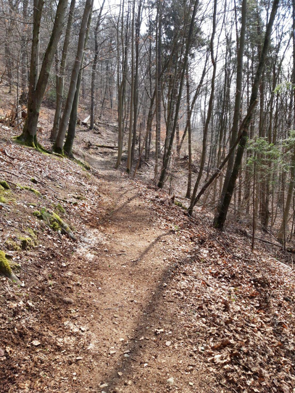 Trailpflege in Kipfenberg im Altmühltal