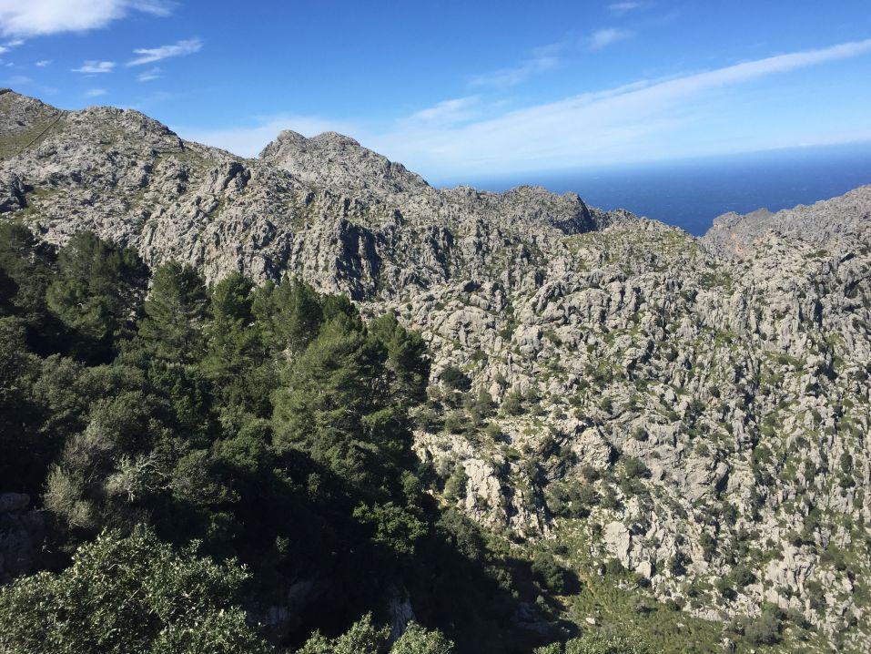 Foto 11.03.18, 12 29 31_Mallorca