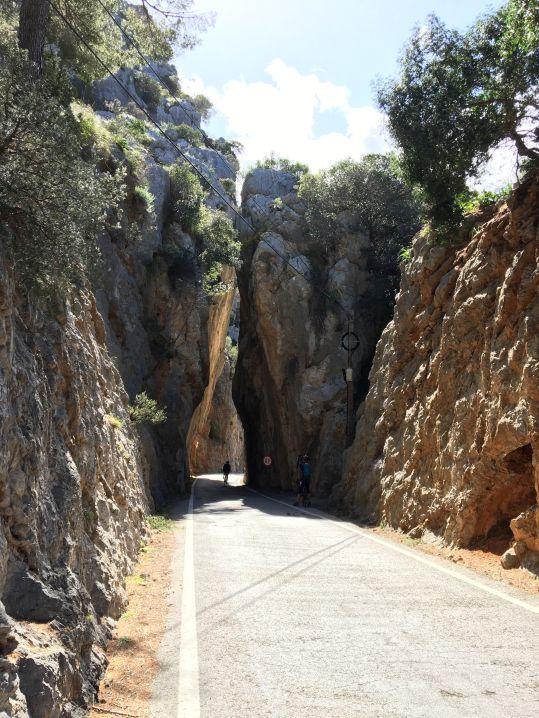 Foto 13.03.18, 13 28 46_Mallorca