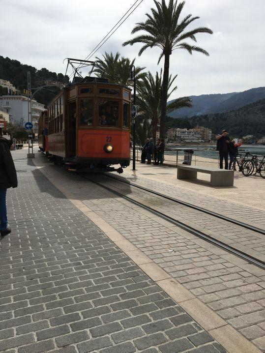 Foto 14.03.18, 12 49 37_Mallorca